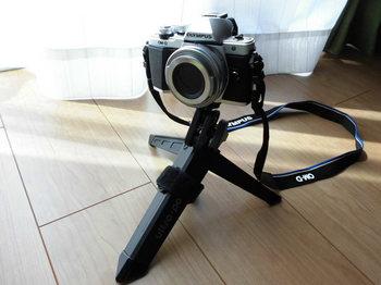 CIMG6632.JPG