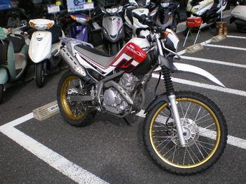 IMGP0881.JPG